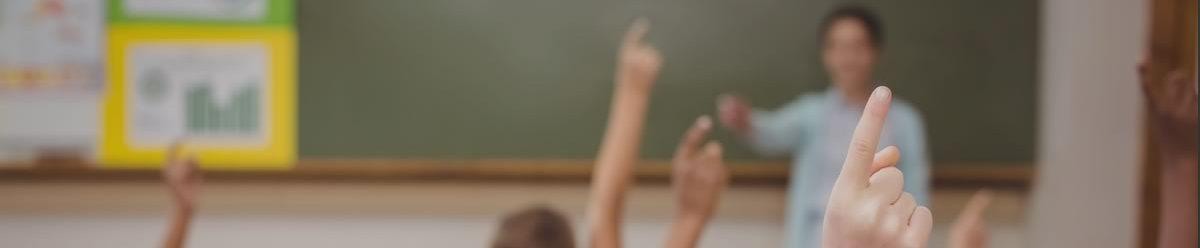 Il piano di formazione delle scuole pisane